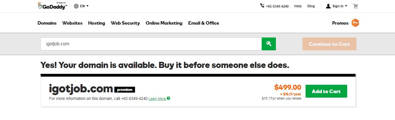 How to Sell Premium Domain Name 2019
