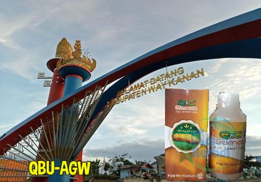 Penjual QnC Jelly Gamat di Way Kanan