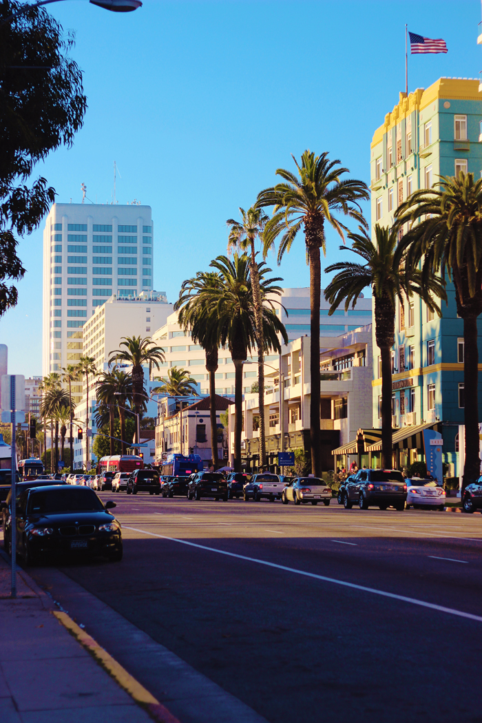 Aimerose Santa Monica