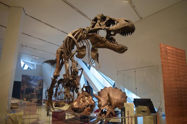 #emptyROM in the Dinosaur Room! - TheCraftyMann.Blogspot.ca