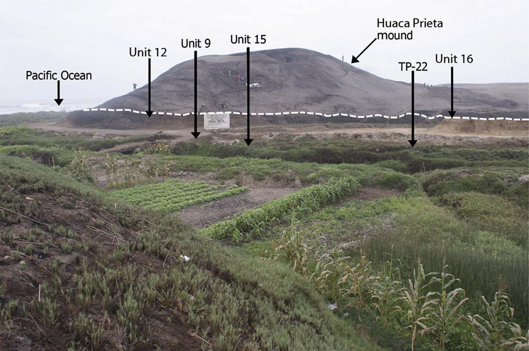El montículo de Huaca Prieta situado en la Terraza de Sangamon. Las flechas indican los diversos hallazgos.