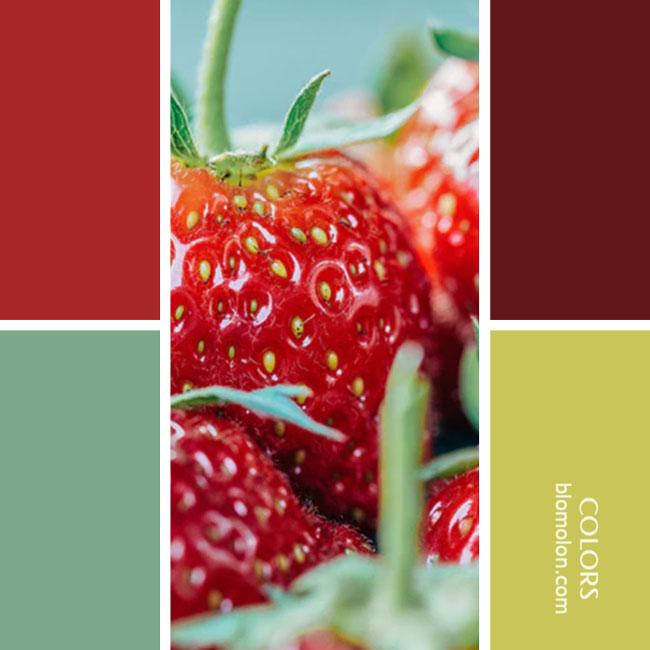 variedad_en_color_combinacion_23