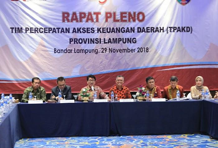 Dorong Pertumbuhan, Pemprov Lampung Minta Kabupaten/Kota Bentuk TPKAD