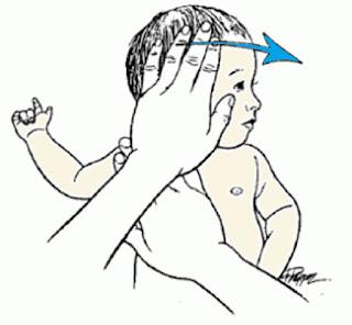упражнение для выправления черепа