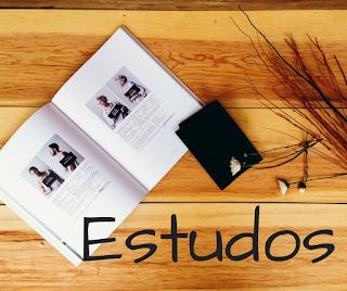 Organização, estudos, estudar,