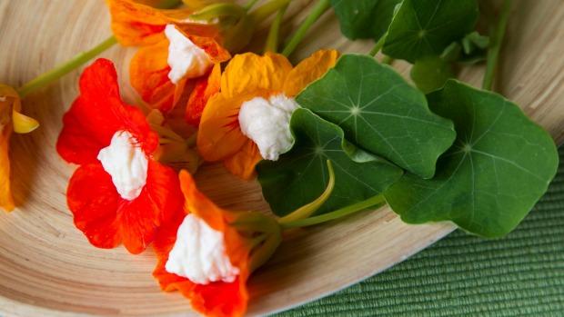 In bloom: Ricotta-stuffed nasturtiums