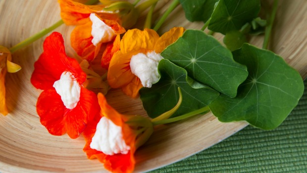 Ricotta And Feta-Stuffed Nasturtium Blooms Recipe Lucy Corry Image Ross Giblin