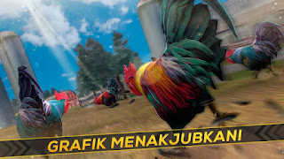 Balap Ayam Jago v1.6.0 Apk1
