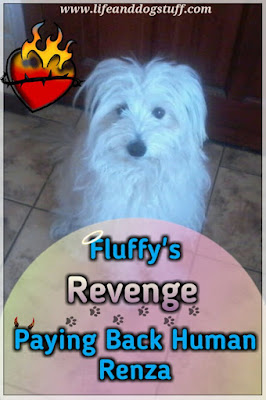 Fluffy's Revenge - Paying Back Mommy Renza.