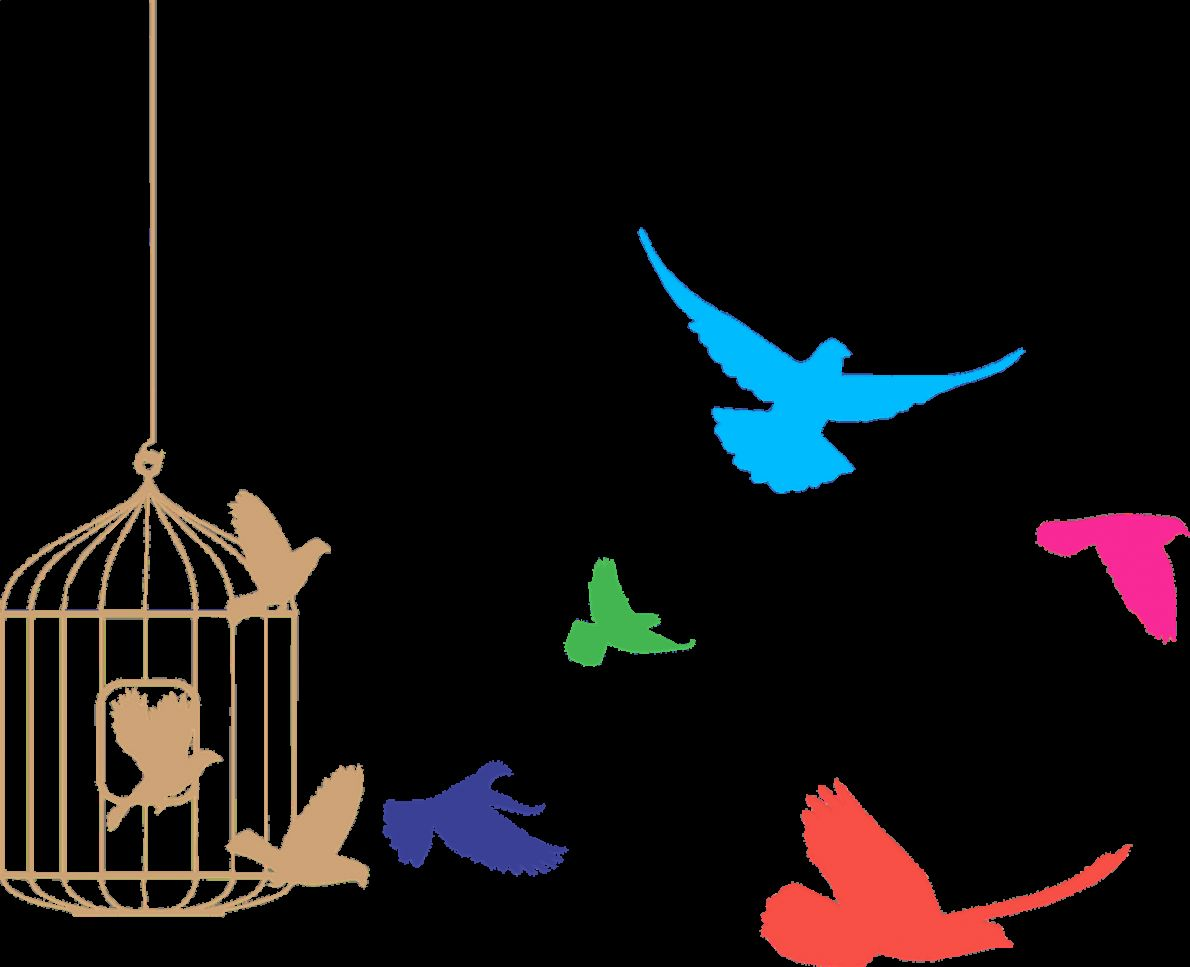 e3dc9fc7285 Birds flying from cage clipart transparent stickpng jpg 1190x967 Stickpng  animals transparent png cat funnypictures