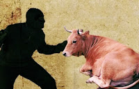 Polsek Monta Amankan Terduga Pelaku Pencurian Ternak