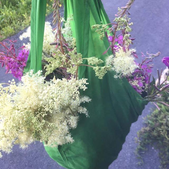 På sanketur: mjødurt og geitrams i posen