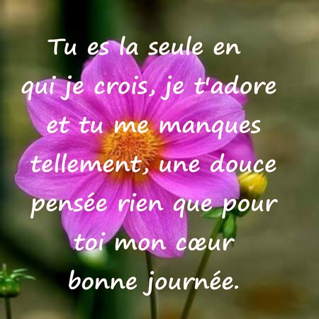 Sms Bonjour Sms Bonne Journée Messages Damour