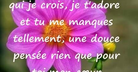 Sms Bonjour Sms Bonne Journée Messages D Amour
