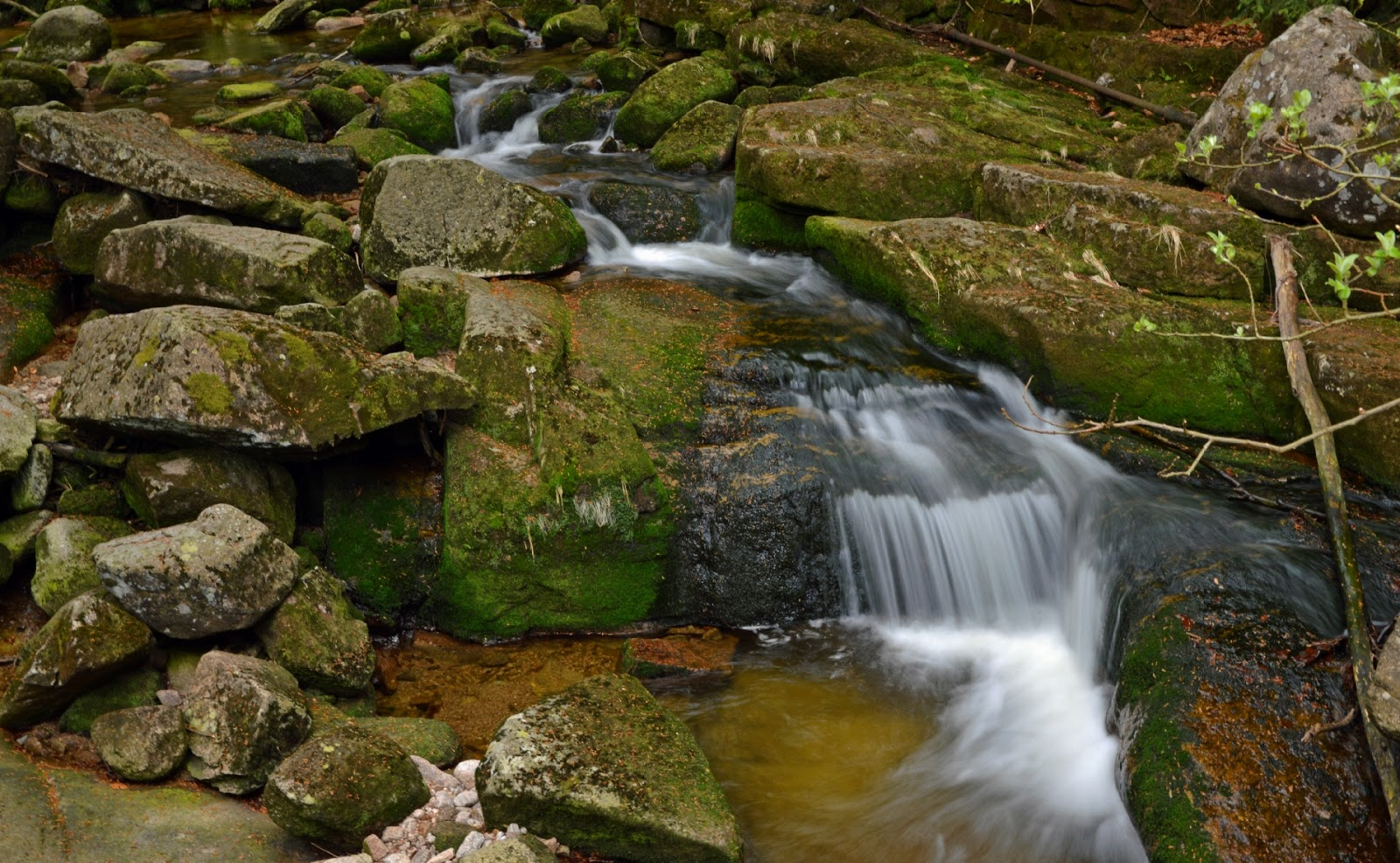 Potok Kamieńczyk Karkonosze