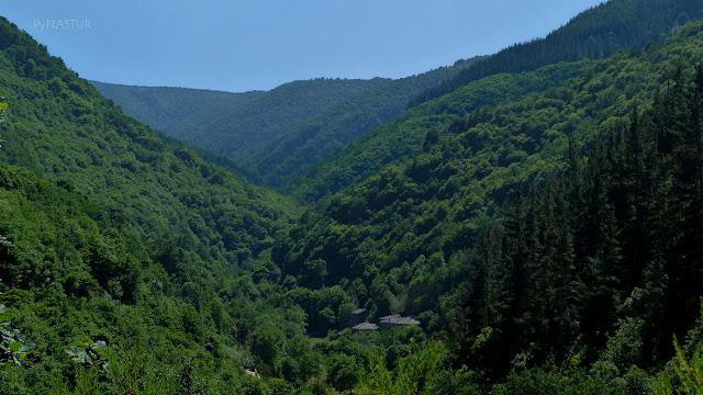 Bosque del Valle del Río Turia - Aldea As Veigas - Taramundi