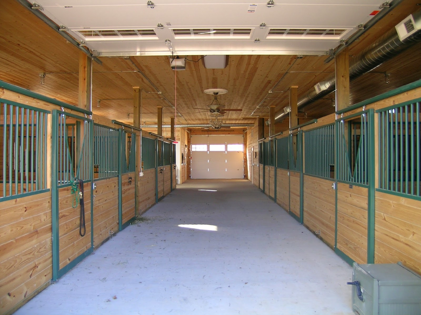 Lester Buildings blog: What Size Should Your Horse Barn Be?