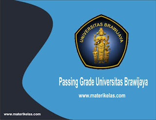 passing grade universitas brawijaya 2017