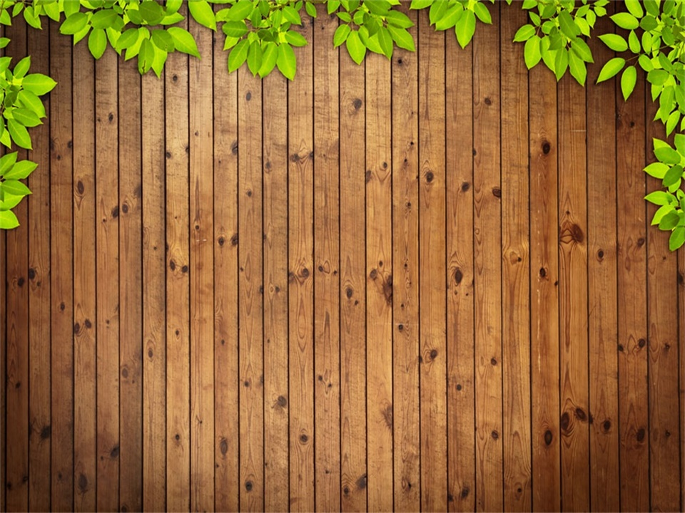 green leaf and wood grain ppt backgrounds