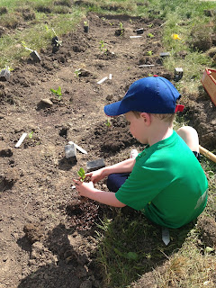 planting the rain garden for homeschooling