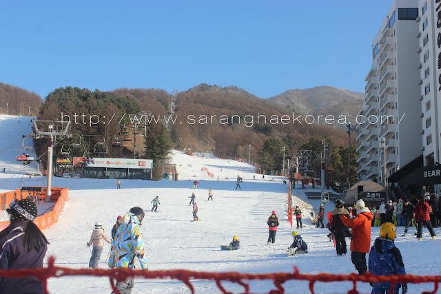 Ski and More at Bearstown Ski Resort(베어스타운리조트 스키장)