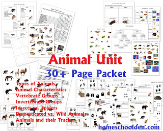 Animal Classification Worksheets and More