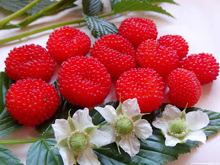 Atherton raspberry fruit images wallpaper