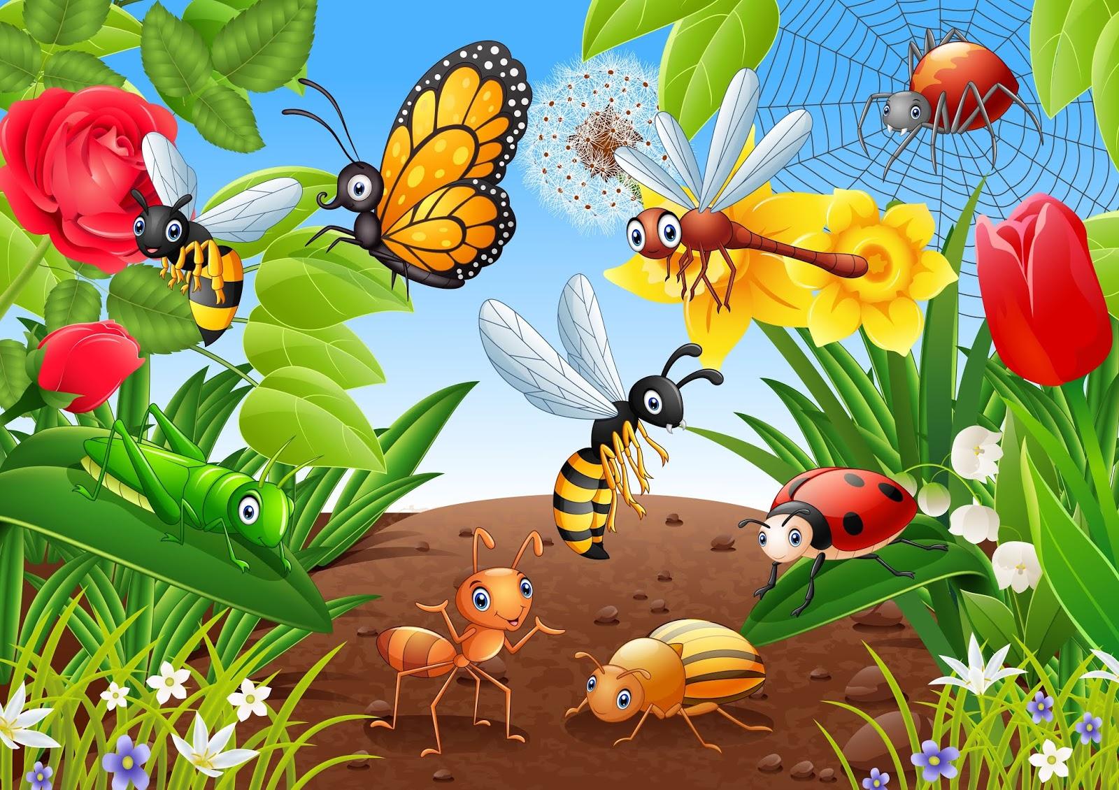 Картинка луг с насекомыми для детей