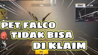 Kenapa Pet Falco Tidak Bisa Diklaim