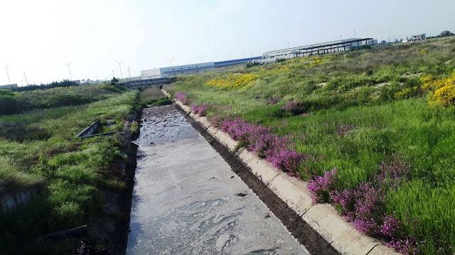 Canale Lagrimaro, a Cerignola c'è un problema. Il M5S incalza sul caso e ascolta i cittadini