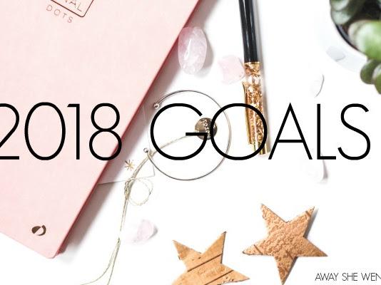 2017 Recap + 2018 Goals