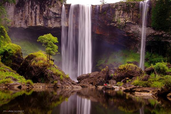 Gia Lai: Lại đòi lấy 256ha rừng để xây thủy điện trong khu bảo tồn