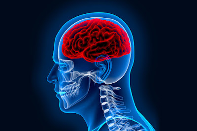 Best Neuromedicine Specialist in Dhaka