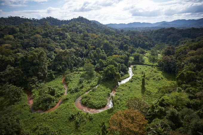 Lost City Discovered In The Honduran Jungle