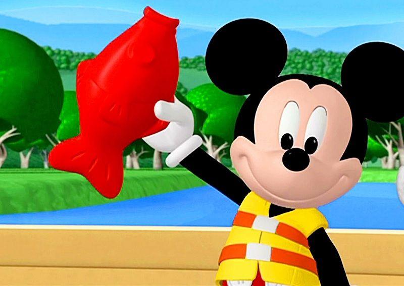 Gambar Ikan Mickey Mouse