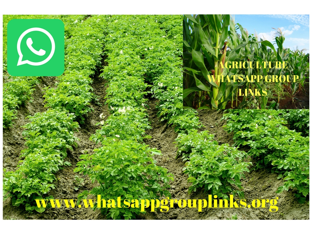 JOIN LATEST AGRICULTURE WHATSAPP GROUP LINKS LIST(EDUCATIONAL