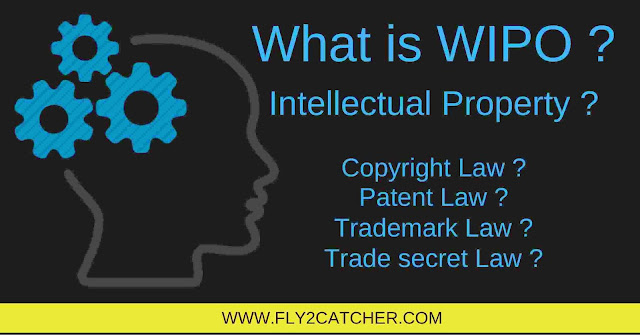 wipo, intellectual property, patent, intellectual property office, intellectual property patent, patent laws, intellectual property rights law