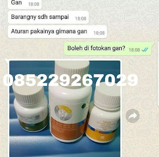 Hub. Siti +6285229267029(SMS/Telpon/WA) Jual Obat Kuat Herbal Bengkulu Tengah Distributor Agen Stokis Cabang Toko Resmi Tiens Syariah Indonesia