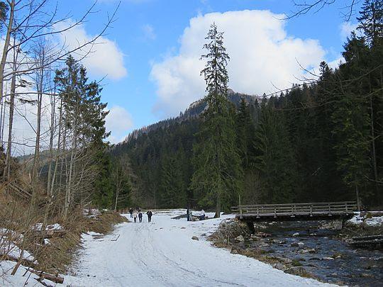 Mostek do Lodowego Źródła i Jaskini Mroźnej.