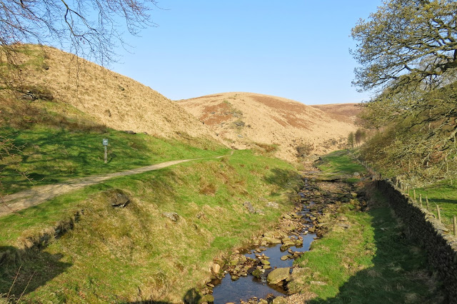 A path on the left follows the course of the right-hand fork in the stream. There is a fold in the moorland to the left, Willyhay Clough.