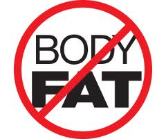 tips on eating healthy and losing abnormal fat in your body