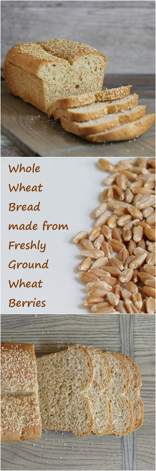 Whole wheat bread made from freshly ground wheat berries