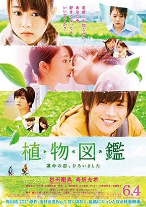 Shokubutsu Zukan Evergreen Love