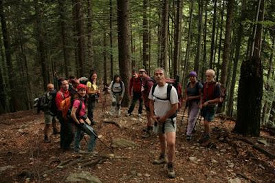 trekking-los-carpatos-alpes-transilvanos-en-rumania-enlacima