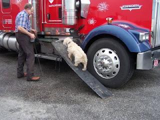 rampas para veículos