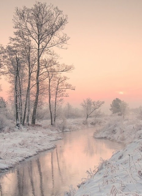 white-pink Christmas Is Coming pictures, photos & images