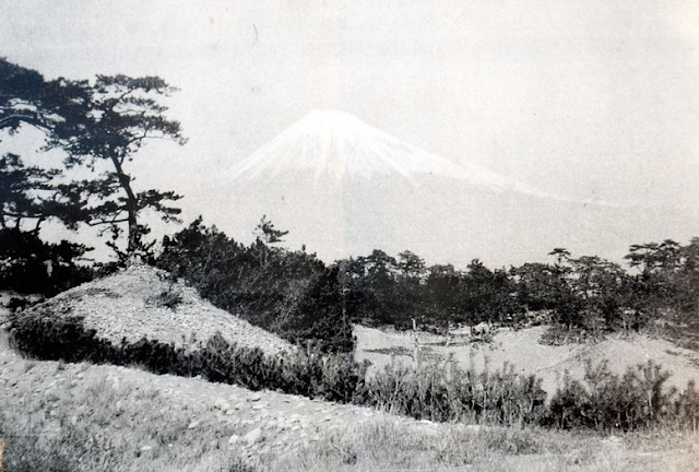 'Fujizuka' mound in Shizuoka found to date to Edo Period