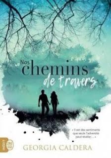 https://lacaverneauxlivresdelaety.blogspot.com/2018/11/nos-chemins-de-travers-tome-1-de.html