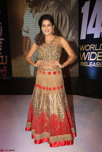 Jenny in brown transparent sleeveless anarkali dress at Shamanthakamani pre release function ~  Exclusive 002.JPG