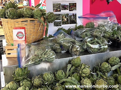 Fresh artichokes from Mexico, for sale in Comali, Festival of Mexican Cuisine